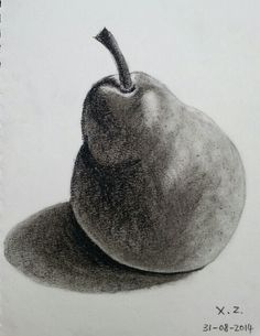 Charcoal drawing of still life pear by Xin Zheng. Check out my facebook page at https://www.facebook.com/xinneke.art?ref=hl