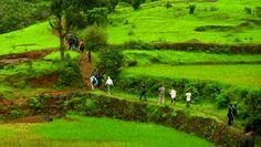 Challenging Treks in India : TripHobo Travel Blog