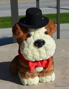 FlowerToy Sir Bulldog Doggy