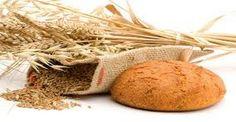 Chlieb náš každodenný... V pote tváre budeš jesť svoj CHLIEB, kým sa nevrátiš do zeme... Alebo čo je zlé s dnešným chlebom.