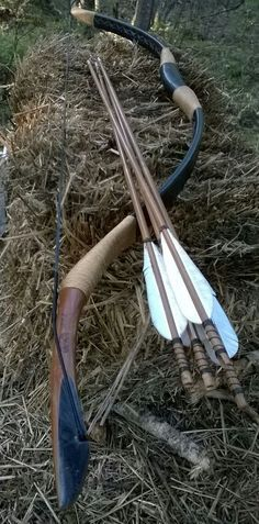Bow that inspired my design for my hickory backed black cherry Turkish design horse bow.