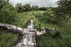 "For his project ""Happy End,"" German photographer Dietmar Eckell has travelled all over the world to find and photograph abandoned airplane wreckages with positive endings. That last part may seem like a paradox, but all of the 15 wreckages Eckell has shot actually do have happy endings: no one on board died, and they were all rescued from the remote locations where they crash landed."