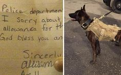 After A K9 Dies, Little Girl Donates Allowance To Buy Ballistic Vests For Police Pups