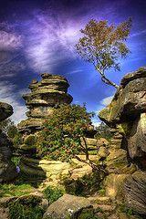 Brimham Rocks, near Harrogate Yorkshire England, Yorkshire Dales, North Yorkshire, Wonderful Places, Beautiful Places, Beautiful Pictures, Places To Travel, Places To Visit, Nature Sauvage