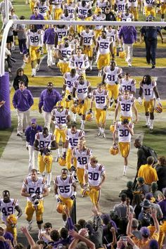 LSU Tigers      For Great Sports Stories and Funny Audio Podcasts, Visit www.RollTideWarEagle.com