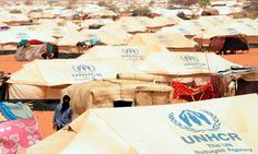 Refugees at a camp in near the border with Photograph: Abdelhak Senna/AFP/Getty Images Un Refugee, One Life, Real People, First Love, Ong, Pictures, Image, Photograph, Africa