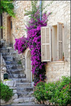 Stairway, Provence, France - Three of my favorite things in one picture (a window, purple flowers, and stairs--hard to know how to categorize it! Beautiful World, Beautiful Places, Cultural Architecture, France Photos, Provence France, Provence Style, South Of France, France Cafe, Stairways