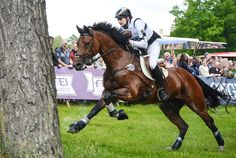 Cross Country Jule Wewer and Lasse by LuDa-Stock on DeviantArt Cross County, Cross Country Jumps, Equestrian Problems, Equestrian Quotes, Show Jumping, Horse Pictures, Horse Photography, Horse Love, Animals Of The World