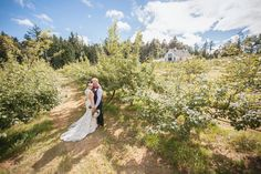 Sea Cider Farm and Cider House Wedding | Ashley and Brandon Photography