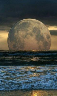 Full moon rising above the ocean is a captivating experience. Moon Photos, Moon Pictures, Nature Pictures, Images Of Moon, Moon Pics, Beautiful Moon, Beautiful Places, Beautiful Pictures, Stars Night