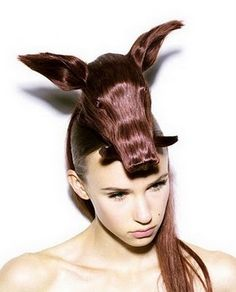 31 Best Crazy Hairstyles Images On Pinterest Weird Hairstyles