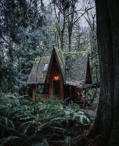 Witchy Cabin