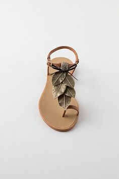 Loving these sandals -- Glasir's Grove Sandals from Anthropologie