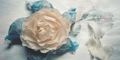 Jane Packer Flowers London and International Home Page- International Florist and Flower School