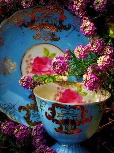 Alice is wonderful .....    aliceiswonderful:  gypsypurpleloves:  via Damselfly58 Flickerstream