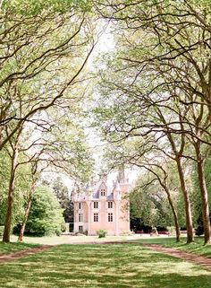 one of my favourite places in the world... Chateau St Julien// - standing under that alley of trees is pure magic.