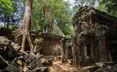"""Kambodscha: """"Temple Running"""" in Angkor Wat Ta Prohm, Angkor Wat Cambodia, Booking Sites, Cheap Flights, Color Photography, World Heritage Sites, Southeast Asia, Around The Worlds, House Styles"""