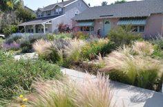 LA Meadow Garden 1