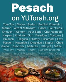 "Yeshiva University's Center for the Jewish Future and Rabbi Isaac Elchanan Theological Seminary presents ""PESACH TO GO"""