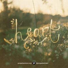 Guard your heart above all else, for it is the source of life. Proverbs 4:23