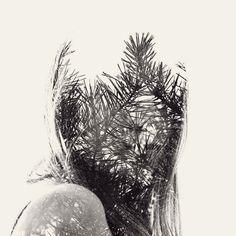 We Are Nature: New Multiple Exposure Portraits by Christoffer Relander. There are several on the page if you click through. All of these images are reportedly done in-camera, and not in Photoshop.