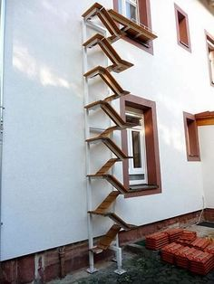 Best Coolest Cat Stairs Ever Spiral Staircase Winding Up 3 640 x 480