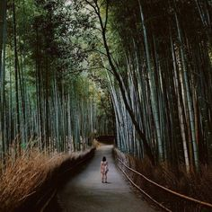 Kyoto, Japan - According to The Pinterest 100, Kyoto is going to be the hottest destination of 2017.This is good news for introverts, who are likely to feel more comfortable in Japan than they do in their own stateside, as it's a quieter culture. Check out our guide to Tokyo, and see below for our Kyoto recs.What To Eat: Kinmata, for a traditional kaiseki meal.Where To Stay: The Hoshinoya Resort, accessible only by boat.What To See: Lose yourself in the breathtaking sites of theSagano…