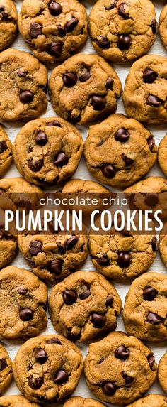 These CHEWY pumpkin chocolate chip cookies are a must try this fall! Recipe on s… These CHEWY pumpkin chocolate chip cookies are a must try this fall! Recipe on sallysbakingaddic… More from my site Pumpkin Chocolate Chip Cookies Recipe Just Desserts, Delicious Desserts, Dessert Recipes, Desserts Menu, Fall Desserts, Pumpkin Chocolate Chip Cookies, Pumkin Cookies Recipes, Recipes With Pumpkin, Healthy Pumpkin Cookies