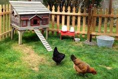 Quelques conseils et idées pratiques pour avoir des poules dans son jardin. Les accueillir comme il se doit pour qu'elles soient au meilleur de leur forme toute l'année.. Les poules ont la côte en ce moment, elles sont les stars des jardins. Les français ont craqué pour ce gallinacé et sont d... Farm Animals, Animals And Pets, Winner Winner Chicken Dinner, Coops, Permaculture, Agriculture, Poultry, Backyard, Cool Stuff