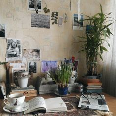 mydaisysoul: The most peaceful part of my room ☺