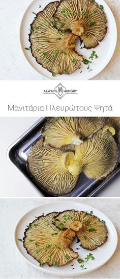 Μανιτάρια Πλευρώτους Ψητά | Συνταγή Snack Recipes, Cooking Recipes, Healthy Recipes, Snacks, Greek Appetizers, Good Food, Yummy Food, Stuffed Mushrooms, Stuffed Peppers