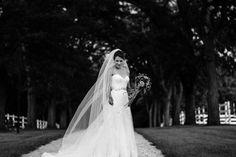 Portland Oregon Wedding Photography Indian wedding Illinois0144 .JPG