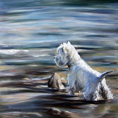 Shop for westie art from the world's greatest living artists. All westie artwork ships within 48 hours and includes a money-back guarantee. Choose your favorite westie designs and purchase them as wall art, home decor, phone cases, tote bags, and more! Highlands Terrier, West Highland Terrier, White Terrier, White Dogs, Scottish Terrier, Boy Art, Dog Portraits, Dog Names, Westies