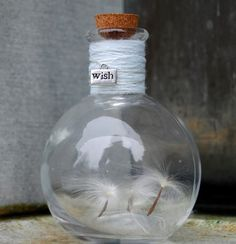 "Wish Bottle -- this is pretty and ""inspiring"".  What if next birthday, a petition paper were placed inside a pretty corked bottle, decorated and prepared with a few drops of appropriate oils and herbs, etc.  Then when making a wish, and blowing out the candles some of the lingering smoke could captured and corked into the bottle.  It could be kept until the wish either comes true or shifts into a different wish.   This same concept could work anytime, not just a birthday."
