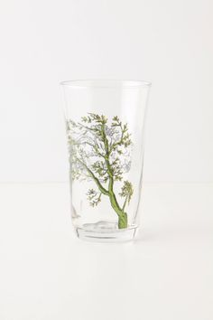 Menagerie Juice Glass, Green - anthropologie.eu