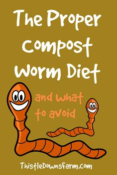 What types of food scraps should you put in your worm bin? Find out everything you need to know about feeding your composting worms right here! Composting At Home, Worm Composting, Raising Farm Animals, Raising Chickens, Gardening For Beginners, Gardening Tips, Easy Garden, Herb Garden, Garden Beds
