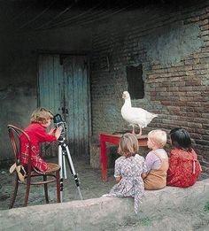 Die Kunst der Tierfotographie - kein Problem für talentierte Kinderfotographen.