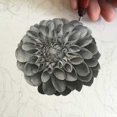 Dotted Drawings, Art Drawings, Stippling Drawing, Dot Art Painting, Pen Art, Drawing Techniques, Drawing Tips, Botanical Art, Doodle Art