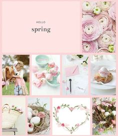 Spring Blooms, My Spring, Hello Spring, Spring Time, Spring Quotes, Hello March, Shabby Chic Pink, Flower Art, Art Flowers