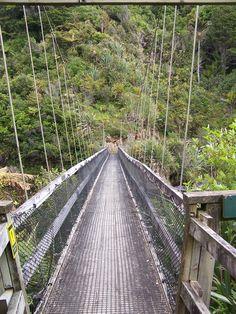 The bridge on the Heaphy Track - Kahurangi National Park, South Island, New Zealand Auckland New Zealand, Great Walks, World 7, Forest Park, New Zealand Travel, South Island, Small Island, Fiji, Holiday Destinations