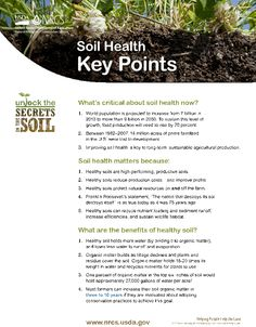 Great fact sheets on this website on Soil Health!