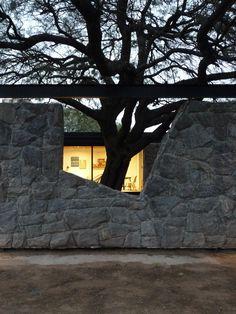 Casa TN - 2017 Córdoba.  Proyecto: BLTarq Plants, Home Decor, Home, Architectural Firm, Architects, Decoration Home, Room Decor, Plant, Home Interior Design