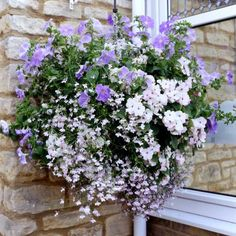 complete hanging basket system with lights - Google Search