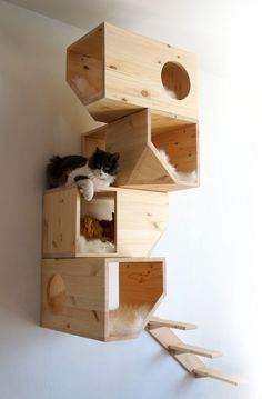 Geometrical Wooden Cat Tree Catissa imagines furniture for cats. One of their creations is a cat tree with geometrical shapes that can be fixed on the wall. Made from wood, this creation offers to. I Love Cats, Crazy Cats, Animal Projects, Diy Projects, Diy Jouet Pour Chat, Niche Chat, Diy Cat Toys, Dog Toys, Wooden Cat