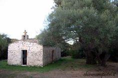 luogosanto - cattedra di san pietro