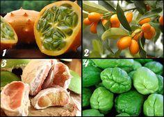 kleines Suchspiel am Abend  heute eher Wissensquiz Pomelo-Chayoten-Kiwanos-Kumquats? was zeigt die Kiwanos?