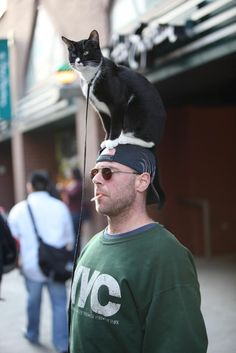 People Wearing Cats As Hats Are Winning The Internet Right Now  See here: http://bit.ly/1ziPGpp  .
