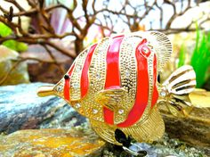 Adorable Fish Badge Holder  Retractable by BadgeAlleybyGerAnne
