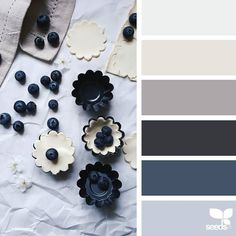 today's inspiration image for { berried tones } is by @_ewabakrac ... thank you Ewa for another fresh inspiring #SeedsColor image share! by designseeds