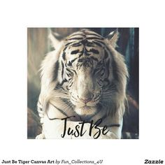 Those with the tiger spirit often have a will power and passion for life that is unrevaled. People with the tiger spirit tend to be confident, loving and wise. Beautiful Creatures, Animals Beautiful, Beautiful Cats, Beautiful Pictures, Animals And Pets, Cute Animals, Animals Photos, Wild Animals, Baby Animals